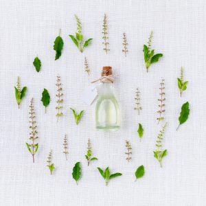 בקבוק וצמחים