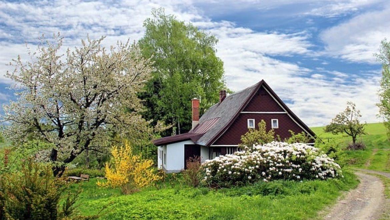 כלי גינון – ציוד לגינה